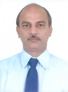 Prof. Dr. N. Sridharan (School for Planning and Architecture, Vijayawada, Indien)