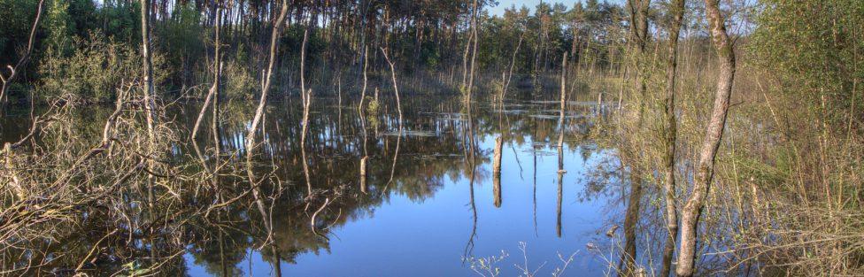Schäden für die Ewigkeit – Bergbaubedingte Reliefveränderungen und ihre Folgen am Beispiel des Ruhrgebietes