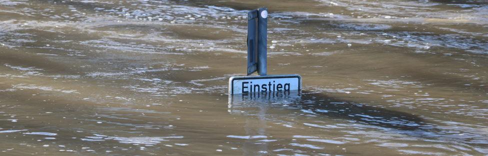 Flüsse und Auen im Wandel – Hochwasserschutz und oder versus Auenrenaturierung?